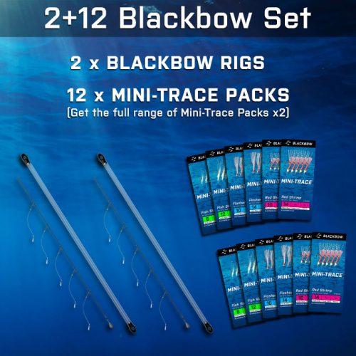2+12 Blackbow Set